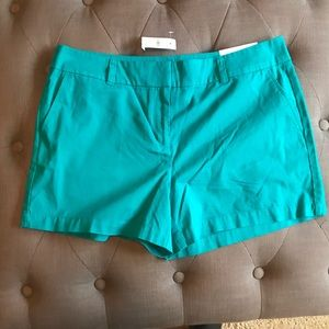 New loft teal colored shorts
